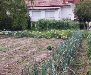 Casa  con huerta de regadío en venta en Boltaña