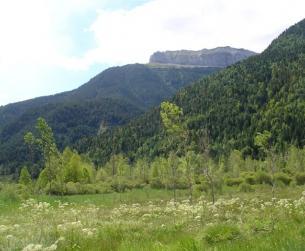 Patrimonio rústico en la zona del Valle de Pineta / Rustic Heritage in the Valle de Pineta