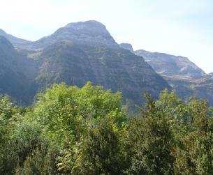 Gran parcela en el valle de Pineta