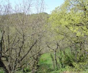 Chalet en plena naturaleza, junto al lago de Barasona