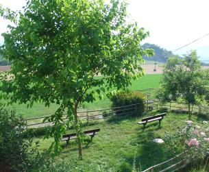 Magnífica vivienda unifamiliar con jardín en La Fueva