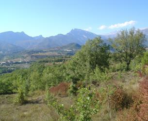 Finca de 1,5 Ha. Buenas vistas a Monte Perdido