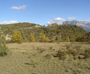 Patrimonio rústico de 3 Ha. Bonitas vistas