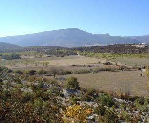 Finca rustica de 6.3 Ha. Excelentes vistas del Pirineo y de La Sierra de Guara