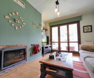 Piso con terraza, chimenea, jardín y garaje en Bielsa