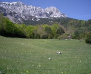 Borda al Norte de Peña Montañesa