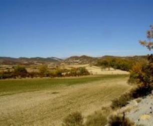 Patrimonio rústico de 10 Ha. usos agrarios, forestales, ganaderos