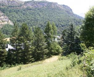 Magnífico chalet con terreno en el Valle de Tena